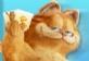 Garfield Hafıza Oyunu