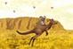 Koala ile Kanguru