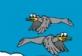 Kuş Avı