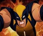 Wolverine Bul ve Yoket