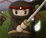 Ninja Halatı