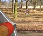 Robin Hood Macerası