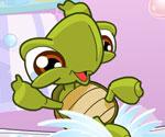 Minik Kaplumbağa
