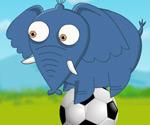Afrika Futbol