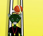 Basketbolcu Kedi