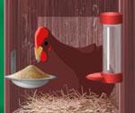 Tavuk Çiftliği 2