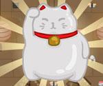 Suşi Kedi