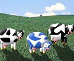 İnek Çiftliği Yönet