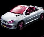 Peugeot Modifiye