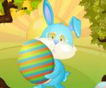 Tavşanlar Arasındaki Fark