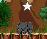 Zıplayan Fil