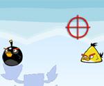 Angry Birds Avla
