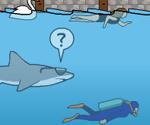 Tehlikeli Köpek Balığı