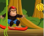 Kaykaycı Goril
