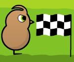 Civciv Yarışı