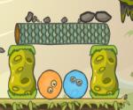 Yumurtaları Koruma