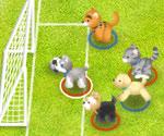 Hayvan Futbolu