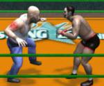 Dünya Güreş Şampiyonası