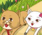 Kedi Krallığı