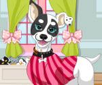 Sevimli Köpeği Giydir