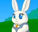 Minik Tavşan Giydir