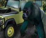 Hayvanat Bahçesi Arabası