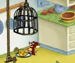 Tom ve Jerry Plan