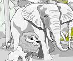 Orman Hayvanları Boya