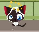 Yaramaz Kedi İş Başında