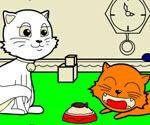Kedi Boyama Oyunu Boyama Oyunları