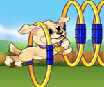 Köpeğimle Oyun Zamanı