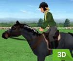 3D At Koşusu Eğitimi