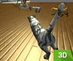 3D Kedi Yarışları