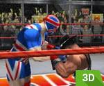 3D Smack Down
