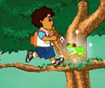 Diego Orman Macerası
