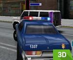 3D Polis Görevi