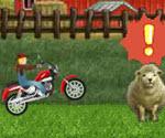 Çılgın Çiftçi Motor Macerası