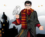 Harry Potter Giydir 3