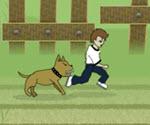 Köpekten Kaçış