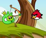 Domuz Angry Birds Vurma