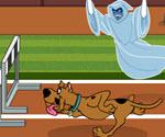 Scooby Doo Koşu Yarışı