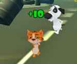 3D Kedi Köpekten Kaçış