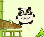 Panda Meyve Toplama