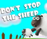 Koyunlar Kaçışta