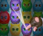 Kedi Adası Oyunu