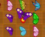 Kelebek Kyodai