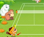 Çılgın Tenisçi