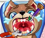 Köpek Dişçisi