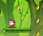 Küçük Maymun