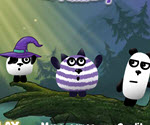 3 Panda Macerası